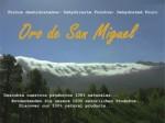 Oro de San Miguel